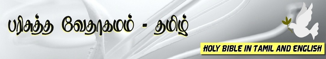 Tamil Bible பரசதத வதகமம Holy Bible Tamil